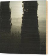 Cypress Trees Looming In Front Wood Print by Todd Gipstein