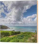 Cyprus Spring Seascape And Landscape Wood Print