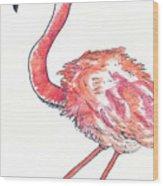 Da Flamingo Wood Print