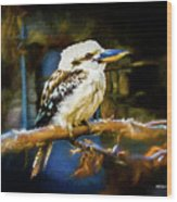 Kookaburra Dacelo Novaeguineae Wood Print