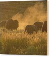 Daddy Bull And The Rut Wood Print