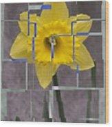 Daffodil 1 Wood Print