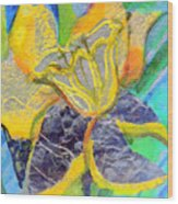 Daffodil Abstract Wood Print