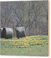Daffodil Bales Wood Print