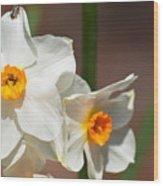 Daffodil Dazzle Wood Print