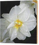 Daffodil Diagonal Wood Print