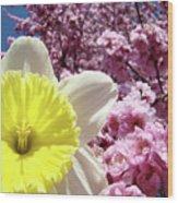 Daffodil Flower Art Prints Pink Tree Blossoms Blue Sky Baslee Wood Print