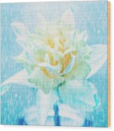 Daffodil Flower In Rain. Digital Art Wood Print