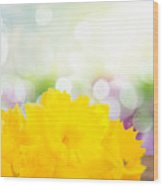 Daffodil Flowers Wood Print