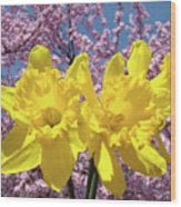 Daffodil Flowers Spring Pink Tree Blossoms Art Prints Baslee Troutman Wood Print