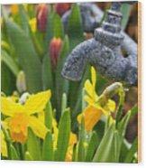 Daffodils 1 Wood Print