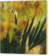 Daffodils - First Flower Of Spring Wood Print