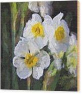 Daffodils In My Garden Wood Print