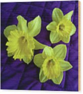 Daffodils On A Purple Quilt Wood Print