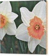 Daffodils Orange And White Wood Print