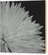 dahlia BnW Wood Print
