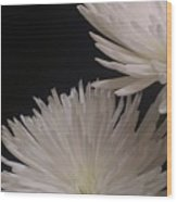 Dahlia Couple Wood Print