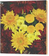 Dahlia Display Wood Print