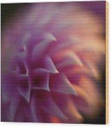 Dahlia Dusk Wood Print