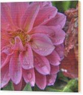 Dahlia Emmily Wood Print