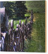 Dahmen Fenceline Wood Print