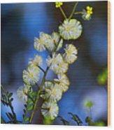 Dainty Wildflowers On Blue Bokeh By Kaye Menner Wood Print