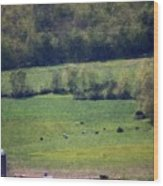 Dairy Farm In The Finger Lakes Wood Print
