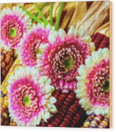 Daises On Indian Corn Wood Print