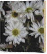 Daisies 1 Wood Print