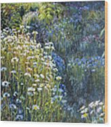 Daisies And Shades Of Blue Wood Print by Steve Spencer