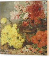 Daisies, Begonia, And Other Flowers In Pots Wood Print
