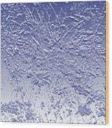 Daisies In Blue Wood Print