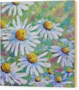 Daisies In Spring Wood Print