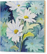 Daisies Wood Print by Sam Sidders
