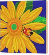 Daisy And Shieldbug Wood Print