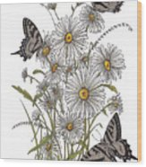 Daisy At Your Feet Wood Print