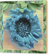 Daisy Blue Frame Wood Print