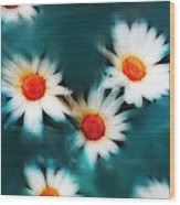 Daisy Blue Wood Print