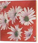 Daisy Chain Wood Print