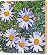 Daisy Flower Garden Abstract Wood Print