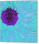Daisy In Disguise Wood Print