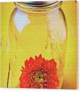 Daisy In Glass Jar Wood Print