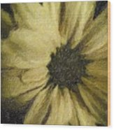 Daisy Luscious Wood Print