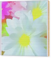 Daisy Poster Wood Print