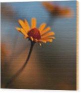 Daisy Standout Wood Print