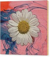 Daisy Swirls 1 Wood Print