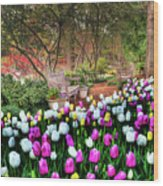 Dallas Arboretum Wood Print by Tamyra Ayles
