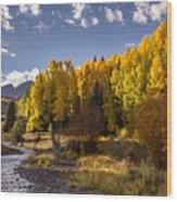 Dallas Creek Wood Print