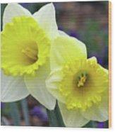 Dallas Daffodils 79 Wood Print