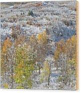 Dallas Divide In October Wood Print